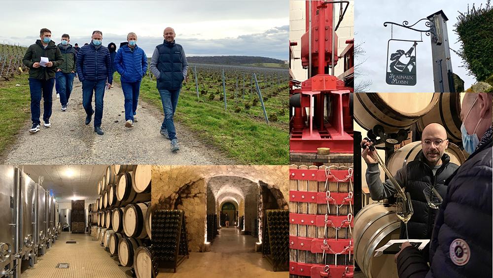 Vigne Bio Ouverte sur la vinification en AB au domaine Jeaunaux-Robin - Jeudi 18 février 2021