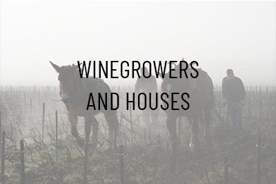The Winegrowers