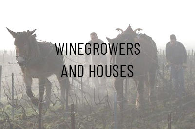 Winegrowers and Houses