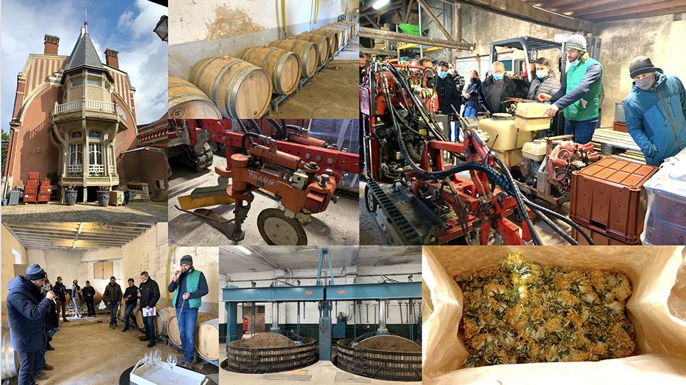 Vigne Bio Ouverte sur la conversion biologique au domaine Alexandre Chaillon - Mardi 9 mars 2021